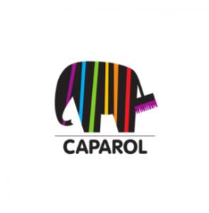 Caparol KEYLENS Bauen und Wohnen