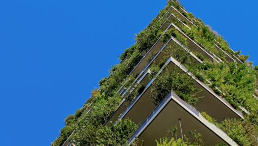 Nachhaltigkeit: jetzt oder nie